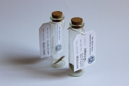 Glass vials, church fragments, card labels.